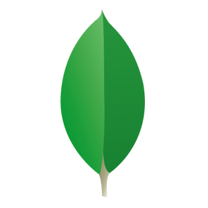 do not tell you about MongoDB